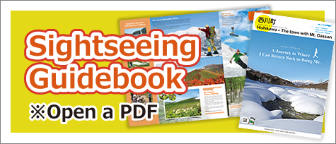 Sightseeing guidebook(Open a PDF file)